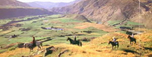 Horse trekking in Queenstown